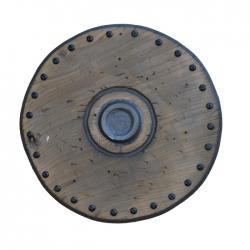 Shield of the knight Elyan