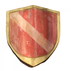 Shield of the knight...